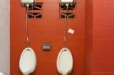 Dejame que dude de las canillas de los bañospúblicos
